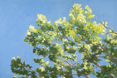 Forest Trees, Green Leaves, Blue Sky, Oil Painting By Linda
