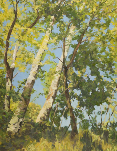 Sycamore, Forest Landscape, Sun, Trees, Beautiful Paintings